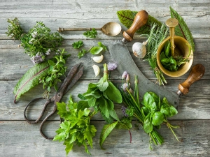 Four Best Herbs For Fertility
