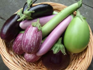 Why You Shouldn T Eat Much Eggplant Or Brinjal