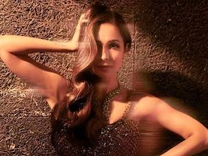 Malaika Arora Looks Glamorous In Bodycon Thigh Slit Glittery Gown