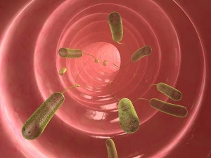 What Is Pinworms Know The Cause And Home Remedies