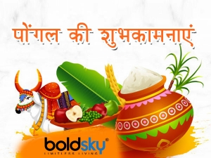 Pongal 2021 Wishes Messages Quotes Greetings Images Facebook And Whatsapp Status In Hindi