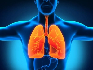 Easy Ways To Keep Your Lungs Healthy