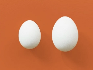 Duck Eggs Vs Chicken Eggs Nutrition Benefits And More
