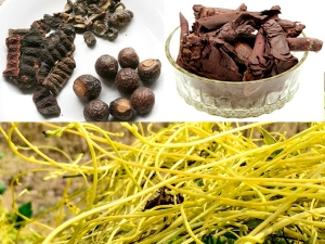 Traditional Tibetan Medicine For Treating Hair Fall