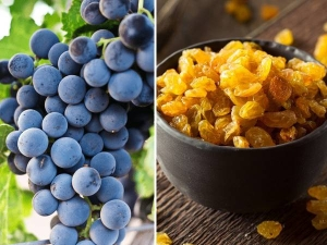 Grapes Or Raisins Which Is Healthier