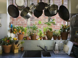 These Things You Should Never Store Under Your Kitchen Sink And 5 You Should