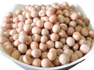 Health Benefits Of White Peas Or Vatana