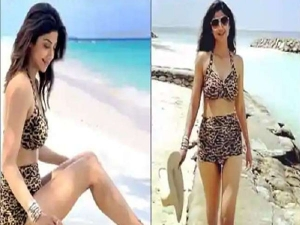 Shilpa Shetty Looks Sizzling In Leopard Print Bikini At Maldives Vacation