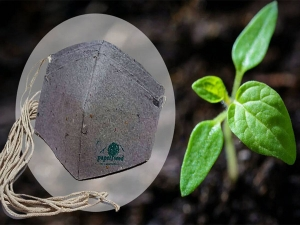 Mangalore Company Makes Biodegradable Face Masks That Grows Into A Plant
