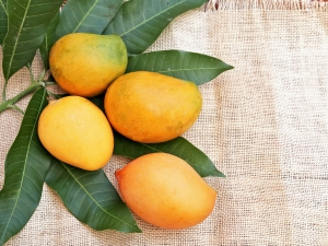 Mangoes When To Eat How Much In Summer And More About Mangoes And Health