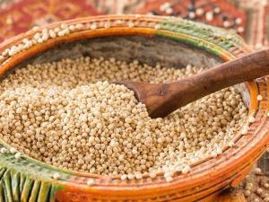 Jowar Sorghum Nutrition Health Benefits Ayurvedic Uses And Recipes In Hindi