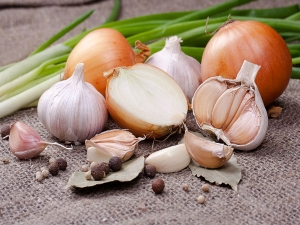 Chaturmas Diet Why We Shouldn T Eat Onion Garlic And Non Veg During These Auspicious Month In Hind