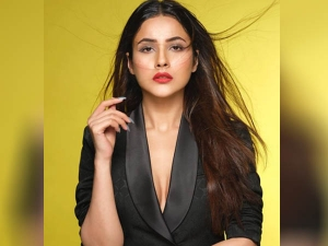 Shehnaaz Gill Sets The Internet Fire With Photoshoot
