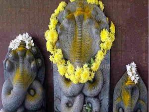 Nag Panchami 2021 How To Worship On Nag Panchami As Per Your Zodiac Signs In Hindi