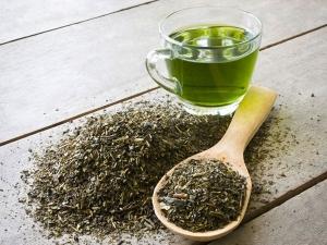How To Make Diy Green Tea Herbal Shampoo At Home For Thick Hair In Hindi