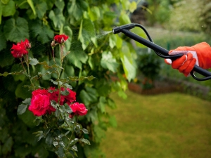 Pest Control Through Own Grown Harvesting Method In Hindi