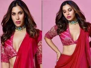 Sophie Choudry Looks Sizzling In Pink Ruffle Saree