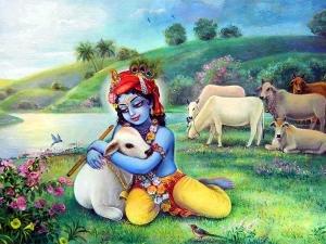 ब्रम्हा की वजह से श्रीकृष्ण ने किए थे खुद के टुकड़े