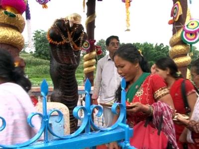 नागपंचमी 2018: इस आसान विधि से  करें अपने घर पर नाग देवता की पूजा