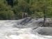 केरल की बाढ़ में फंस गया एक हाथी, जानें कैसे बची जान